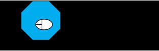 Dora's Web World Logo